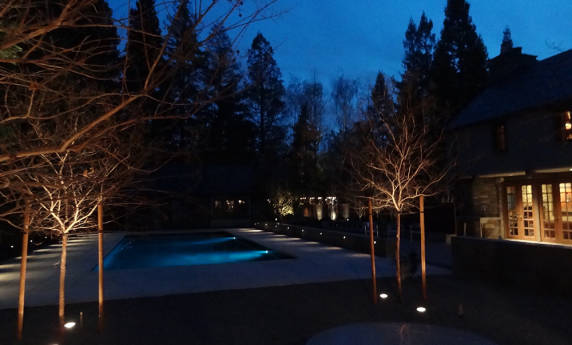 Residential Landscape Pool and Tree Lighting