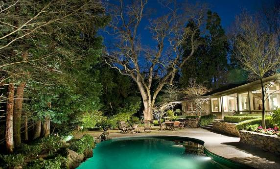 Custom Landscape Lighting with Tree Features
